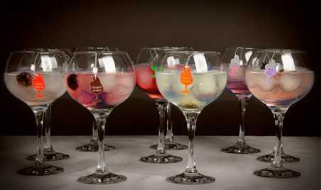 Infugintonic y Vinopremier.com en busca del gin&tonic perfecto