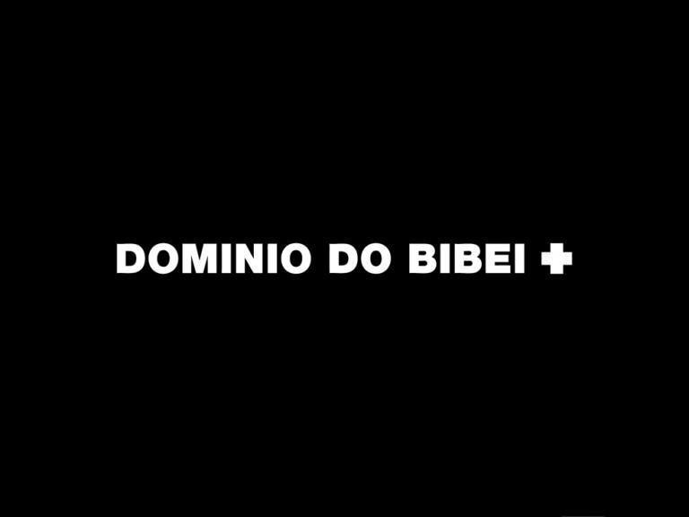 "OS PRESENTAMOS A ""DOMINIO DO BIBEI"" (D.O. Ribeira Sacra)"