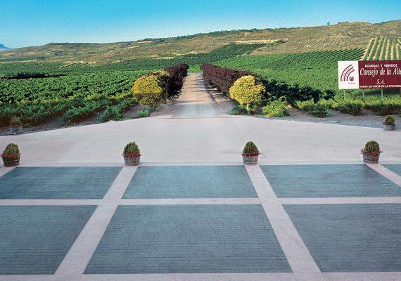 Consejo de la Alta: máximo respeto hacia el viñedo y producción de variedads autóctonas