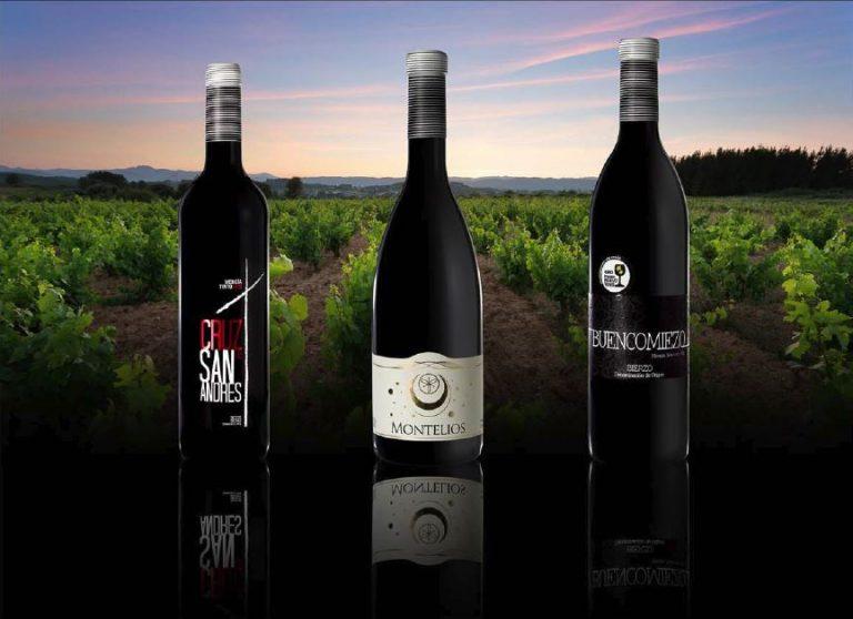 Ante todo soy viticultor, el vino se hace en la viña, Aurelio Feo