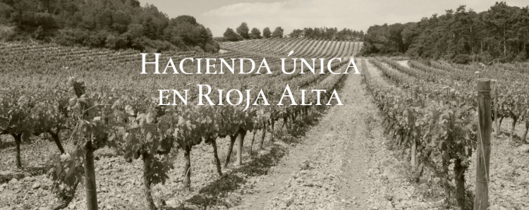 Hacienda el Tenero; única bodega de Castilla y León con D.O.Ca. Rioja.