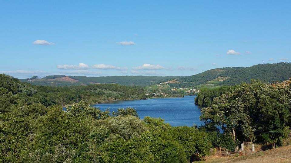 Grupo Reboreda Morgadío; Excelentes vinos de tierras gallegas