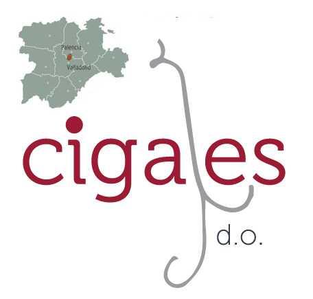 5 vinos con D.O. Cigales que debes catar