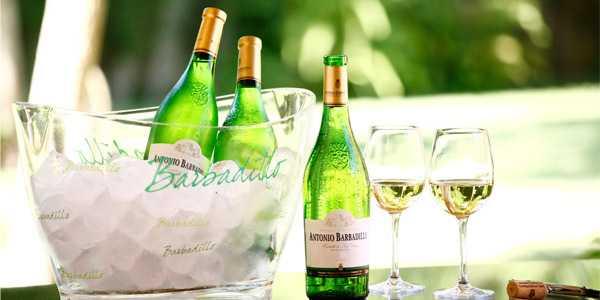 Barbadillo, amor por el buen vino