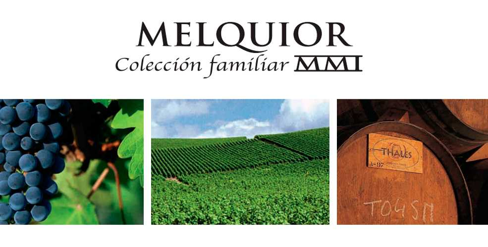 Bodegas Melquior: el Arte del Vino de La Rioja.