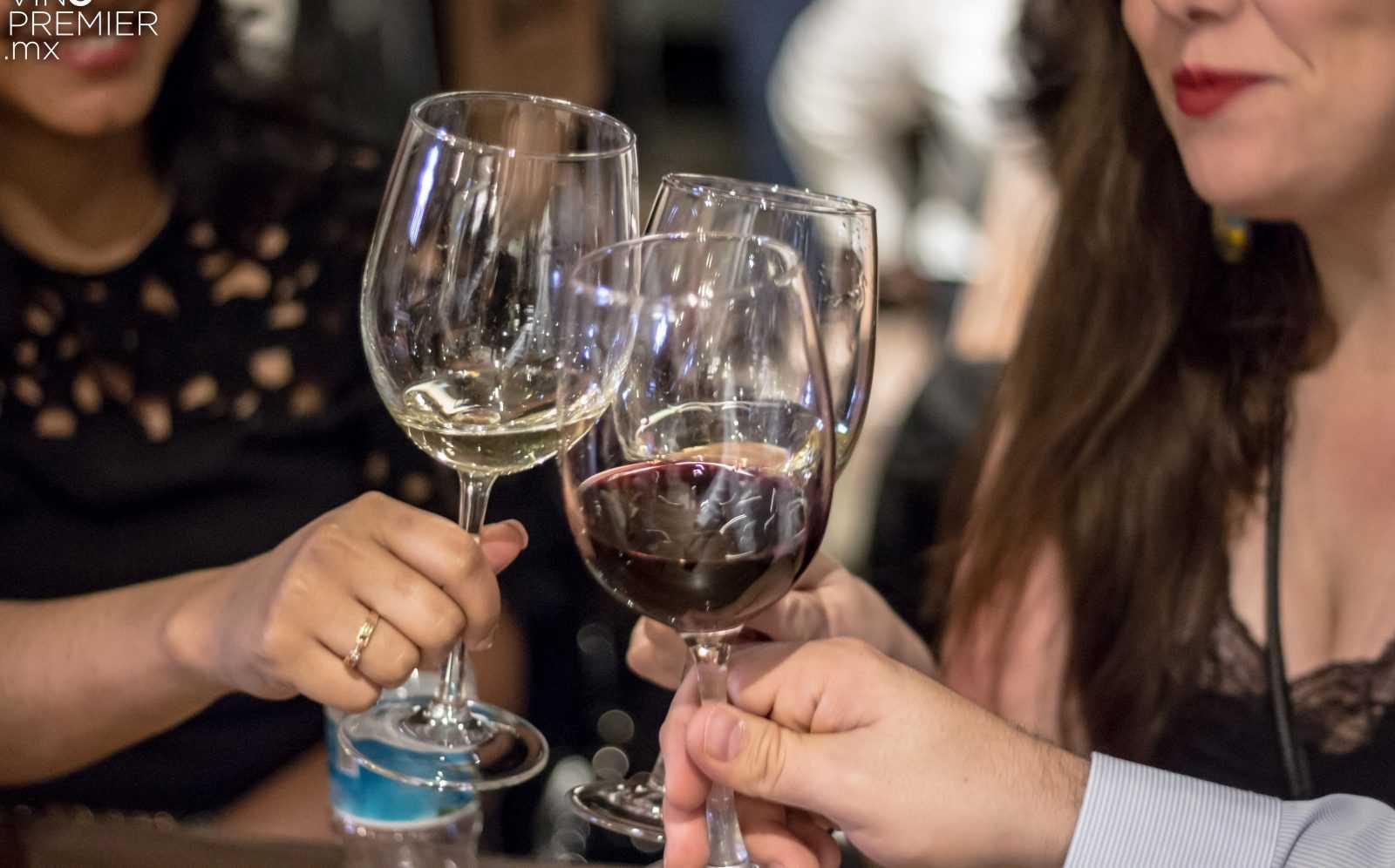 vinopremier condesa