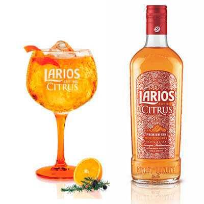 larios citrus gin tonic