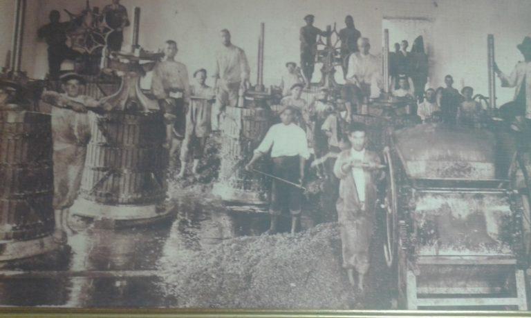 Bodegas Mariscal desde 1913, uniendo tradición y modernidad