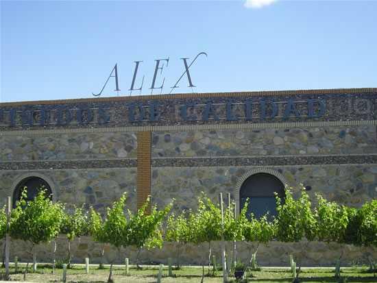 De un viñedo singular, en la confluencia de dos valles así son los vinos de Bodegas Alex