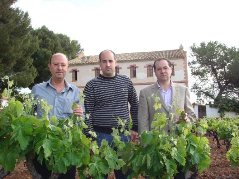 Bodegas Latorre dedicados al cultivo de la vid y a la elaboración de vinos desde principios del Siglo XX