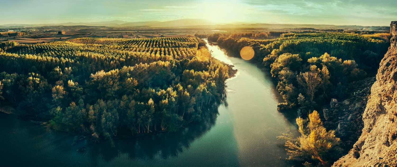 Bodegas Bagordi, vinos ecológicos de verdad y que te sientan bien