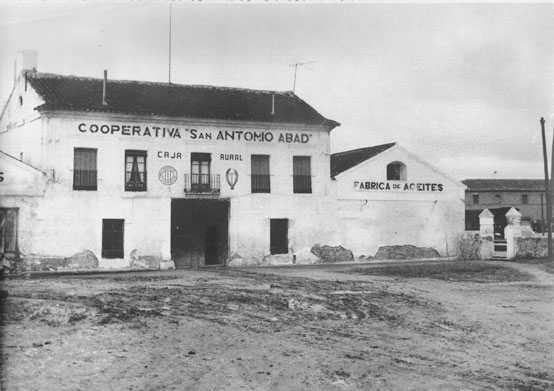 Bodega San Antonio Abad: Historia