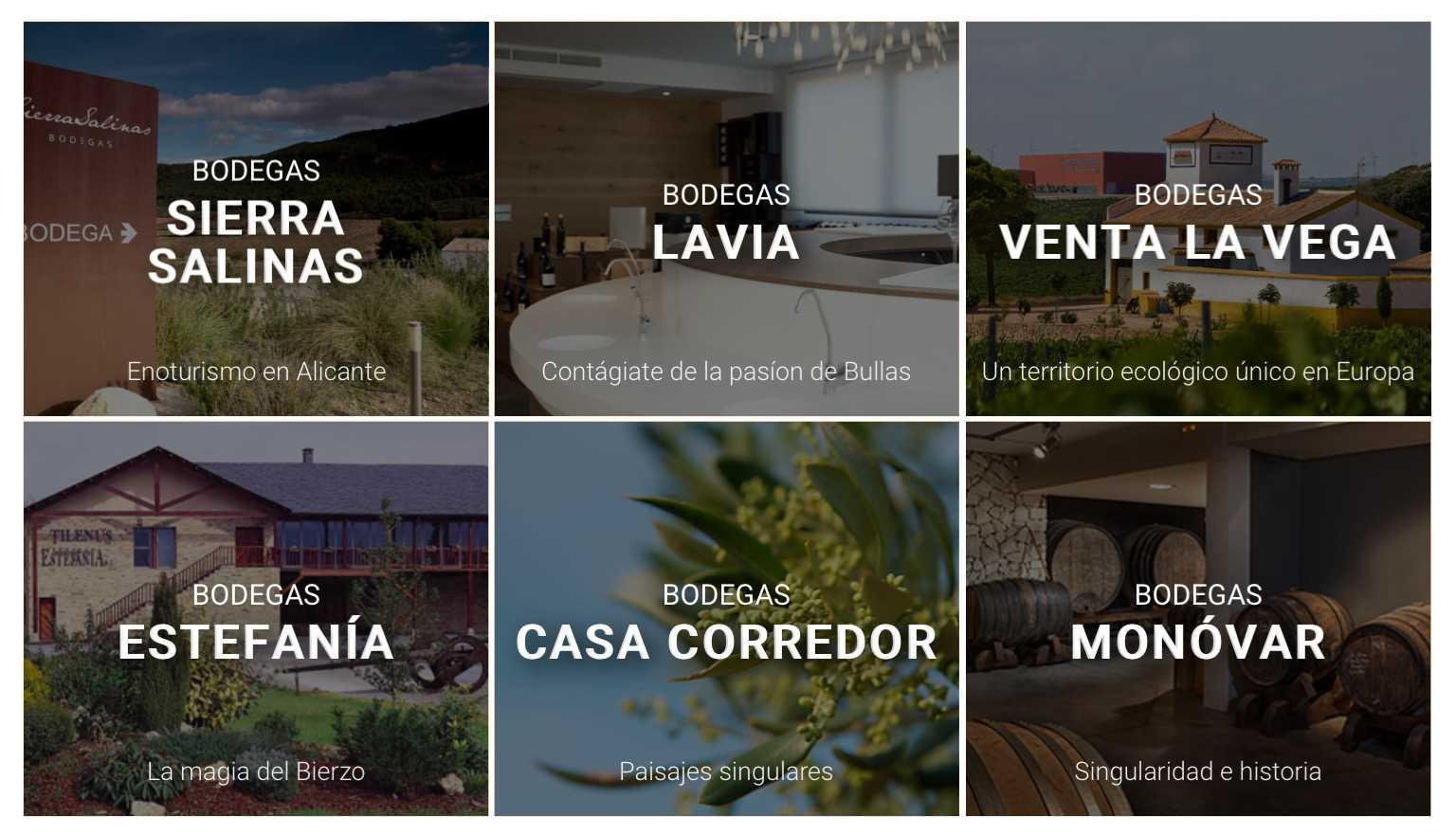 MG Wines - Vinopremier