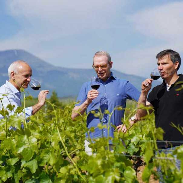 Pgos del moncayo vinopremier