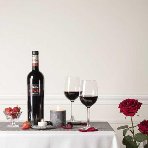 Lar de Paula Merus - Vinopremier