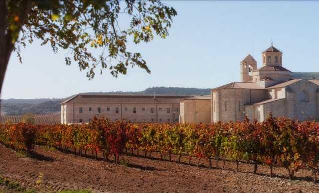Verdejo - Vinos de España